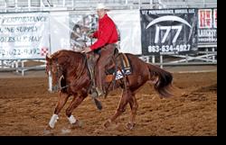 Todd reining
